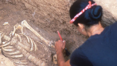 Excavating a grave